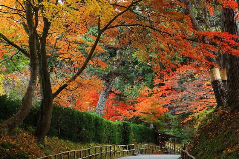 Hiraizumi-Iwate