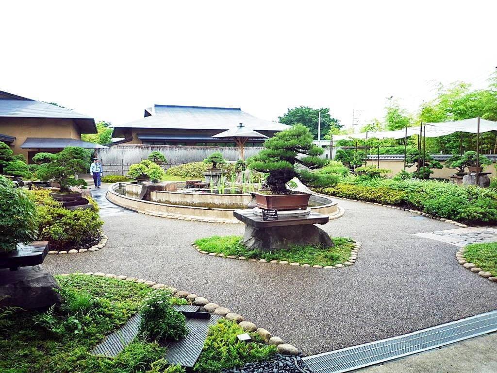 Bonsai Garden Luxury Travel Japan