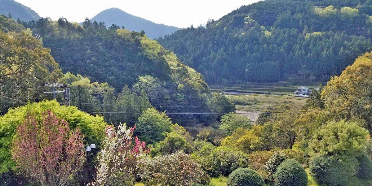 Kumano Kodo Trekking Tour
