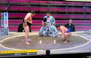 the Grand Sumo Championship