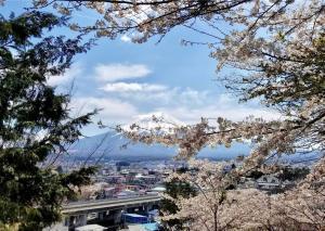 Mt. Fuji from Fuji Sengen Shrine