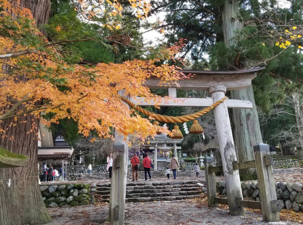 Torii, shrine,