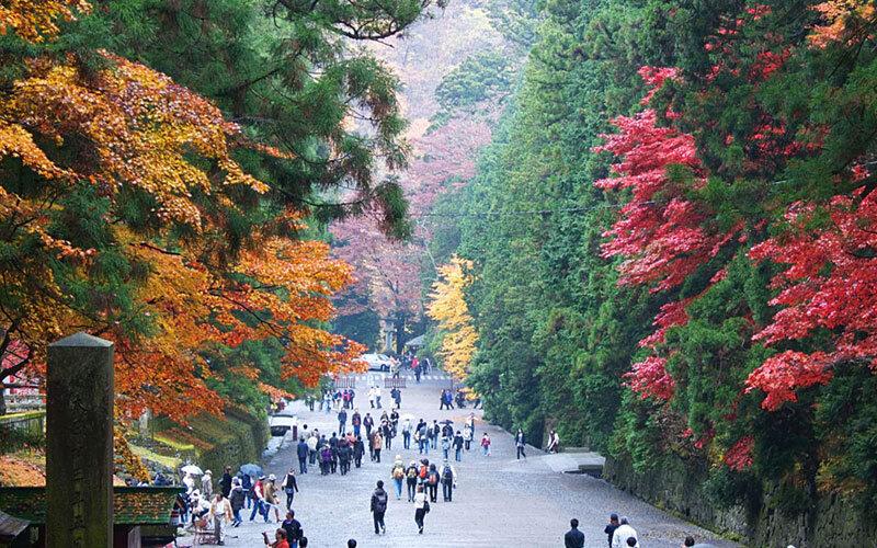 Nikko Samurai and World Heritage Tour