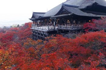 Kiyomizu dera Temple in Kyoto